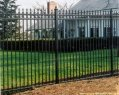 picture of ornamental iron custom steel fences