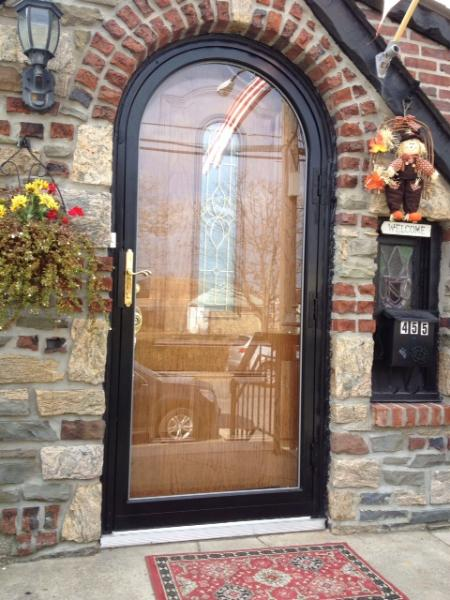 Fullview Arch Storm Security Iron Door